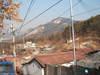 2006_0201olddeca130194